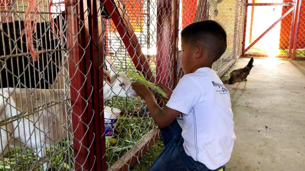 Re-definiendo nuestro propósito: rescatar niños, formar líderes